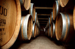 Old wine barrels in cellar Royalty Free Stock Photos