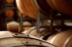 Wine barrels in a cellar. Closeup of traditional white barrels in a cellar stock photo