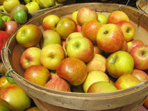 Barrel of apples Royalty Free Stock Images