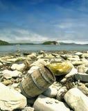 Barrel at the beach Stock Photo
