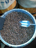 Barrel of Coffee Beans Stock Photography