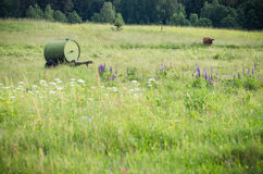 Barrel in the country meadow Stock Photo