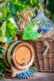 Barrel and demijohn full of red wine. In garden Stock Images