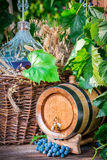 Barrel and demijohn full of red wine. On old wooden table Stock Images
