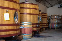 Barrel fermentation and ageing. Red wine barrel fermentation and ageing cellar royalty free stock photos