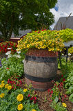 Barrel of Flowers Royalty Free Stock Photo