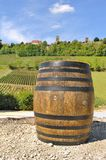 Barrel front of vines Stock Images