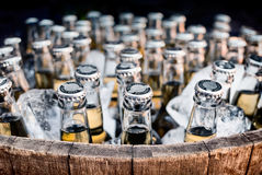 Barrel of generic craft beer bottles in ice Stock Photos