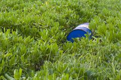 Barrel in grass Royalty Free Stock Photo