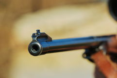 Barrel of a gun. In the sunshine Stock Image