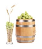 Barrel with hops and wheat. Royalty Free Stock Images