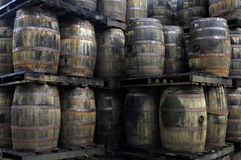 Barrel of old rum in a distillery Royalty Free Stock Image