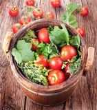 Barrel of pickled tomatoes Royalty Free Stock Photos