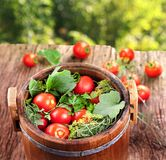 Barrel of pickled tomatoes Royalty Free Stock Image