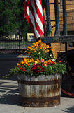 Barrel Planter Royalty Free Stock Images
