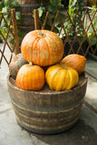 The barrel and pumpkin Stock Image