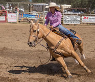 Barrel Racer Stock Photography