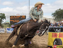 Barrel Racer at the Rodeo Stock Photo