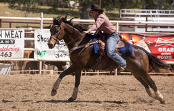 Barrel Racer to the Line Royalty Free Stock Photos
