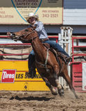 Barrel Racing Cowgirl. Barrel racing action at the Cottonwood Rodeo in northern California Royalty Free Stock Photography