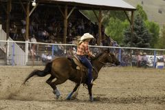 Barrel Racing At High Speeds. Barrel Racing is set on a fast time for the event at a local rodeo royalty free stock image