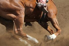 A barrel racing horse. A close up view of a horse running in the dirt Stock Photos