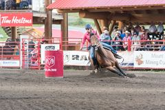 Barrel racing horse and rider gallop around barrel at stampede royalty free stock image