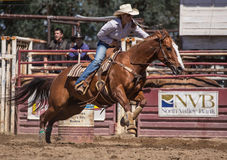 Barrel Racing Stock Photos