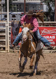 Barrel Racing Sprint Stock Image