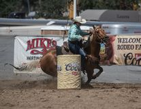 Barrel Racing on a Sunday Afternoon. A barrel racer riders her horse and cuts a turn to kick up a lot of dirt. The rodeo in Cottonwood, California is a popular stock photos