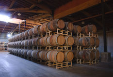 Barrel room Royalty Free Stock Image