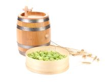 Barrel and sieve with hop. Royalty Free Stock Images