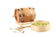 Barrel and sieve with hop. Isolated on a white background Royalty Free Stock Photo
