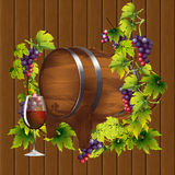 Barrel of wine on the background of the vine Royalty Free Stock Photo