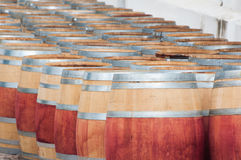 Barrel of wine, Stellenbosch, Western Cape, South Africa. Barrel of wine in the harvest season ready to be filled, Stellenbosch, Western Cape, South Africa Stock Photos
