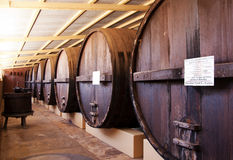 Barrells in a winery Stock Images