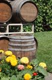 barrels старая Стоковые Изображения