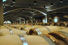 Barrels. In a wine cellar stock images