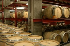 Barrels. In a wine cellar royalty free stock photos