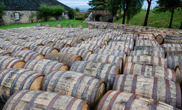 Barrels Royalty Free Stock Image
