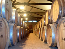 Barrels. Wooden Wine Barrels in a winery - red and white wine Stock Image