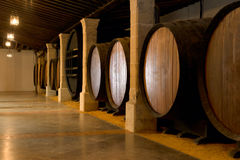 Barrels. Old wooden barrels of sherry in bodega of Spanish town of Jerez de la Frontera Stock Images