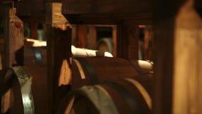 Barrels_010 video d archivio