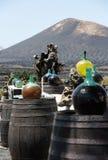 Barrels and  big bottles with grape wine - malvasia.  Lanzarote. Spain Stock Image