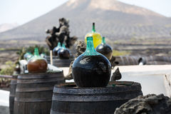 Barrels and  big bottles with grape wine - malvasia. Lanzarote, Spain Royalty Free Stock Images