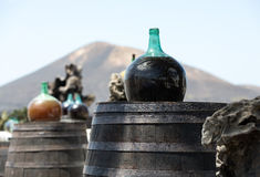 Barrels and  big bottles with grape wine - malvasia. Stock Photos