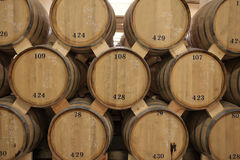 Barrels of brandy Stock Images