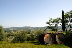 Barrels for Chianti wine. In front of a landscape Royalty Free Stock Photography