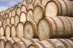 Barrels in the distillery. American oak Bourbon Barrels used at a distillery in Scotland to mellow the Scotch Stock Photo