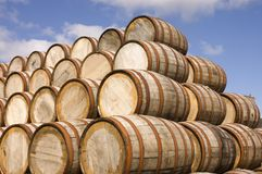 Barrels in the distillery Royalty Free Stock Photography